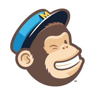 the mailchimp mascot winking
